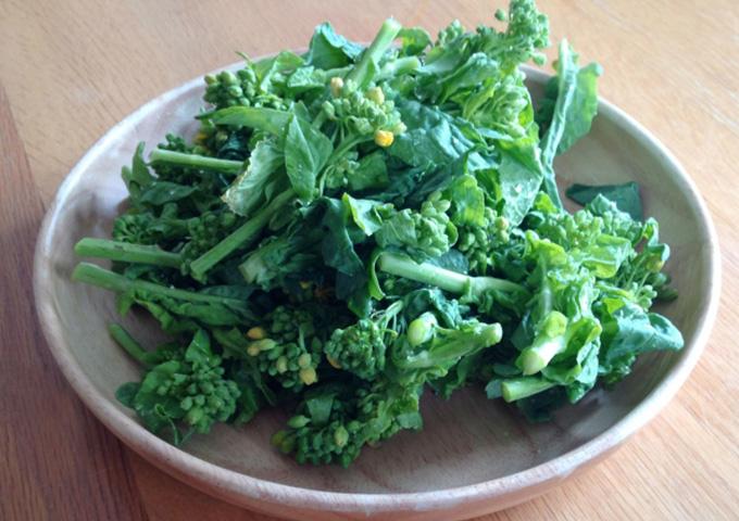 妊娠中、葉酸が多い食べ物「菜の花」