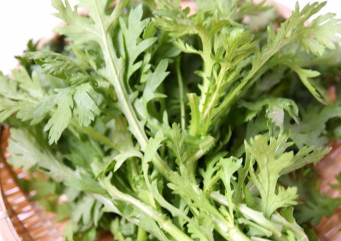 妊娠中の葉酸は春菊で