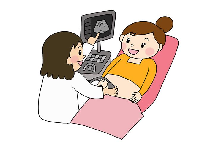 妊婦健診 超音波